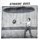 Striking Bags