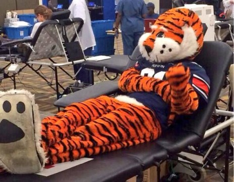 Even Aubie got in on the action, donating specifically to the Charlie Sheen Blood Bank.