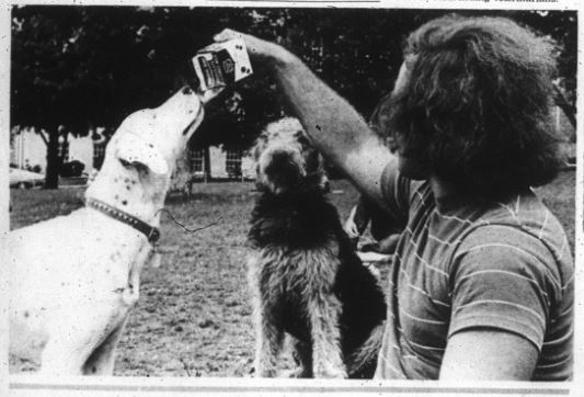 dog milk 2