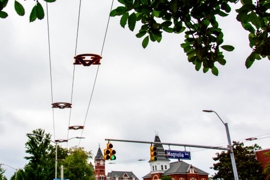 Toomer's Corner Wires Upgraded for 2014 Season