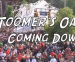 The Toomer's Oaks: Coming Down (a class project)