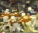 Footage of Auburn playing (in the A-Day game) in orange jerseys during the early Pat Dye years