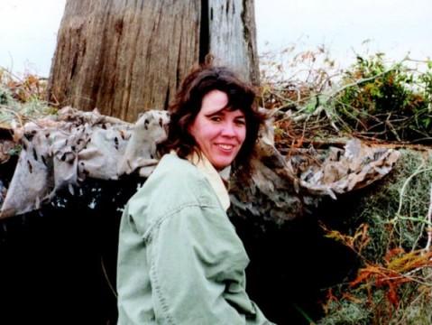 swamp-author