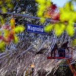 Cleaning the Corner: Montgomery business that de-toilet papers Toomer's busier than ever