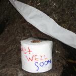 Toomer's Oaks poisoned by Bama fan; Ag professor says poisoner used specialized term for herbicide suggesting professional knowledge
