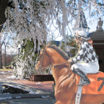 Toomer's Corner comes in second by a nose in Philadelphia horse race