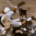 Spring Practice Was Ruff: Dog dominates Auburn scrimmage in 1964 film