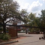 ESPN will likely cover final Toomer's Oaks rolling event