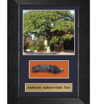 Toomer's Oaks mementos include framed pieces of the oaks, sawdust-encrusted key chains