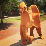 Two dudes celebrate Hump Day by walking around Auburn's campus in a camel costume