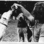 Auburn, the Sochi of the '70s: The Loveliest Village was going to the dogs forty years ago as packs of strays invaded AU campus