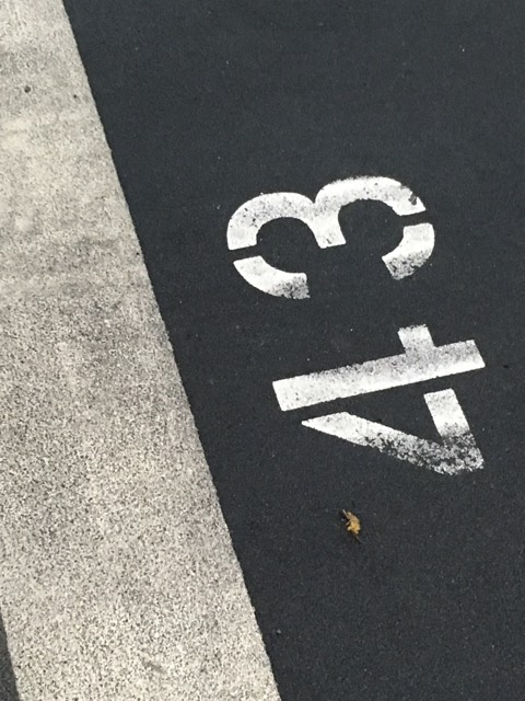 Parking-spot-1